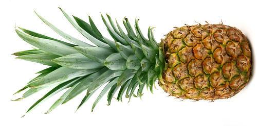 pineapple11
