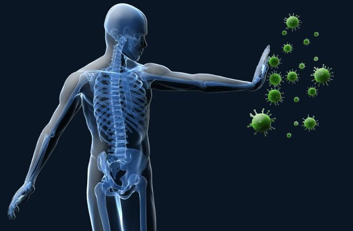 benefits-of-basil-improve-your-immune-system