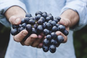 2232455-blueberries-650-fda65b8177-1484652118