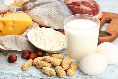 ပရိုတင်းဓာတ် ကြွယ်ဝတဲ့ အစားအစာများ