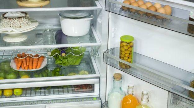 625-fridge_625x350_61433503549