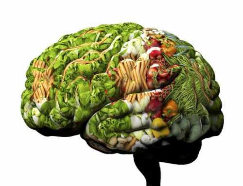 ဦးေႏွာက္မွတ္ဥာဏ္အားကို သဘာဝအတိုင္း တိုးတက္ေစဖို့အတြက္ ဘယ္လိုအစားအစာေတြ စားသံုးသင့္သလဲ